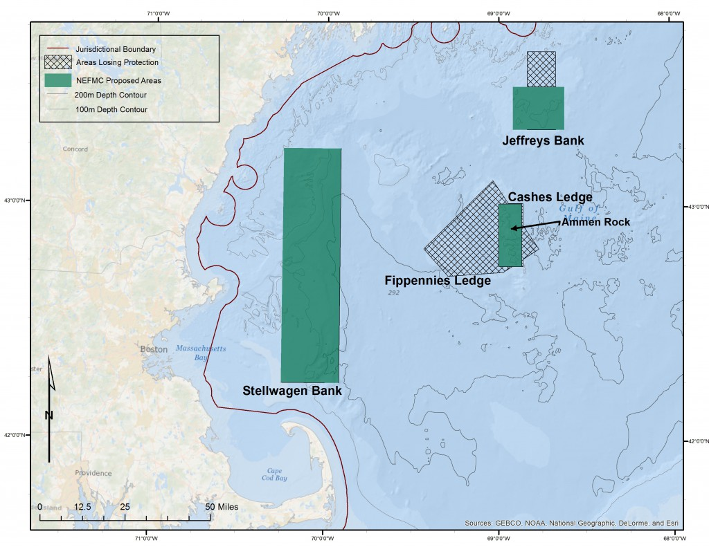 The NEFMC's current proposal would eliminate protection for nearly three quarters of the current protected area around Cashes Ledge.