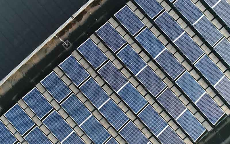 Finding Balance in Siting Solar Energy Projects | Conservation Law